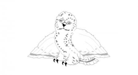Snowy Owl 2019