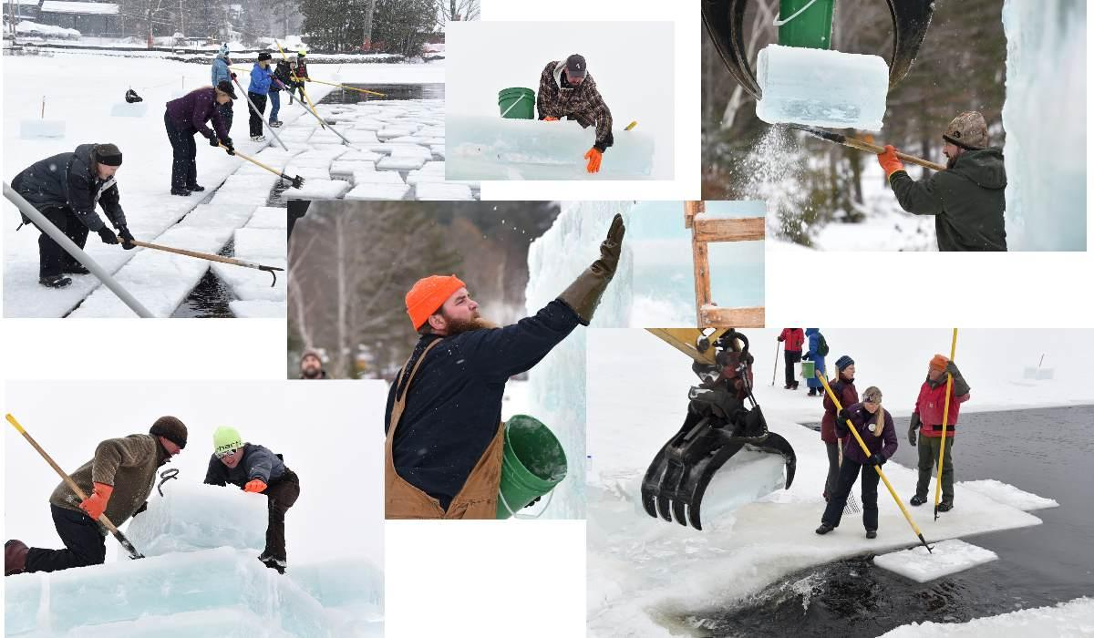 2019 POD Collage 1-19-19