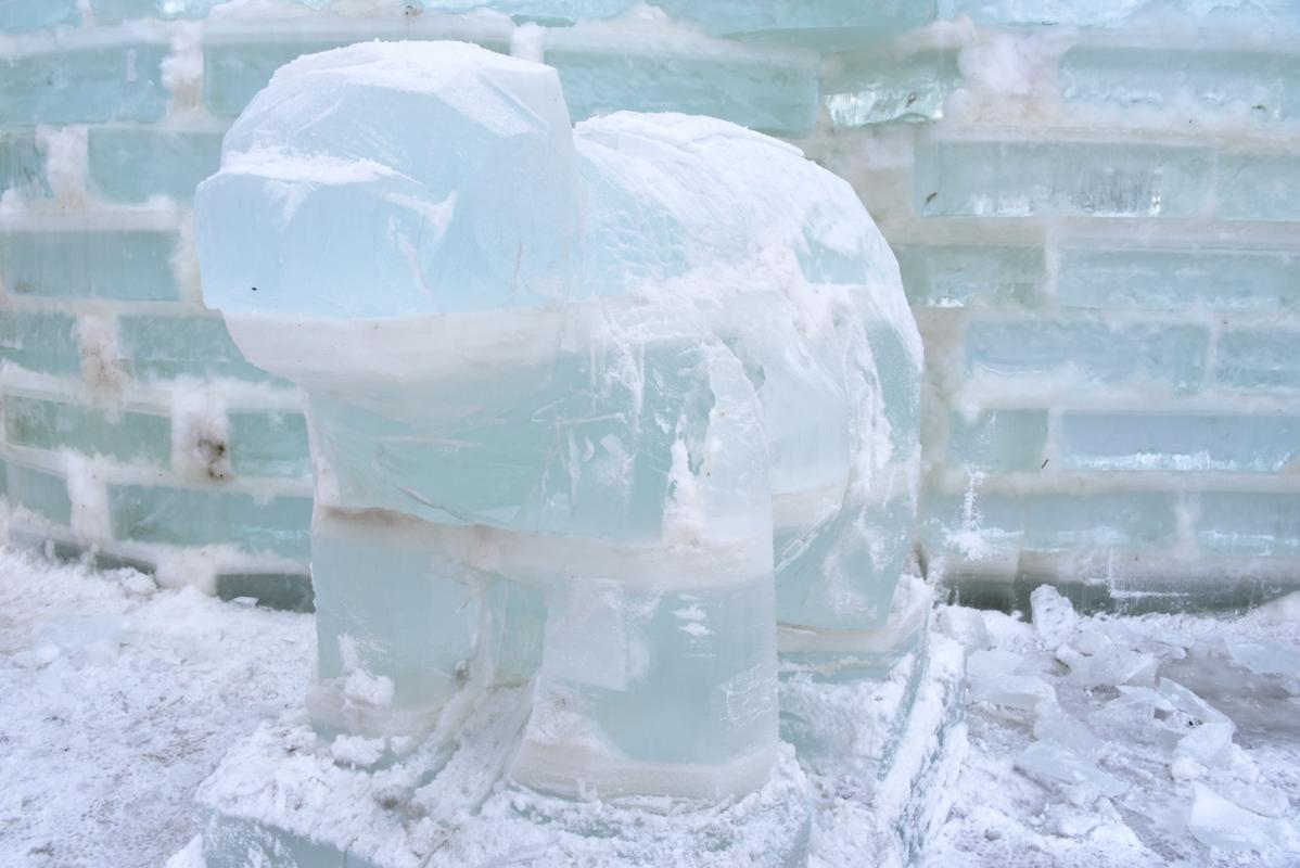 2018 Ice Palace Building PODa 1-28-18